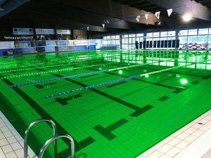 Groen Zwembad