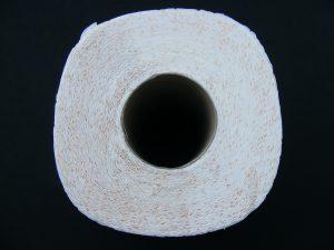 toilet-paper-87389_1280